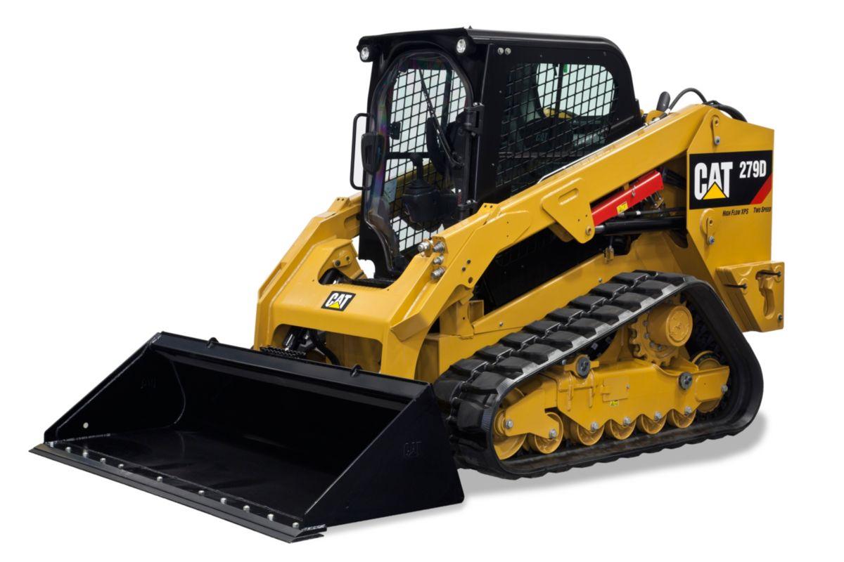 279d Peterson Cat